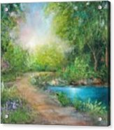 Santa Rosa Creek Path Acrylic Print