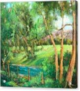 Santa Rosa Creek Acrylic Print