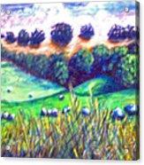 Santa Rosa Plateau Acrylic Print