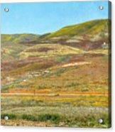 Santa Ynez Mountains Wildflowers Acrylic Print