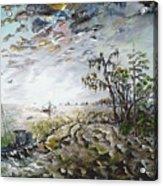 Sapelo Island Acrylic Print by Richard Barham