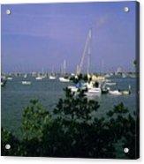 Sarasota Bay Harbor Acrylic Print