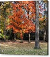 Saturday Here In The Park Acrylic Print
