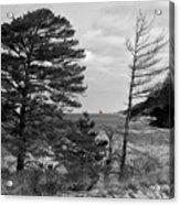 Saugatuck State Park In November Acrylic Print