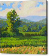 Sautee Vista Acrylic Print
