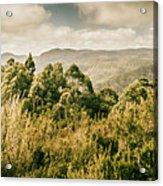 Savage River Lookout, Tarkine, Tasmania Acrylic Print