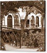 Savannah Arches In Sepia Acrylic Print