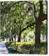 Savannah Benches Acrylic Print