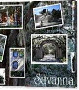 Savannah Scenes Collage Acrylic Print
