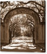 Savannaha Sepia - Wormsloe Plantation Gate Acrylic Print