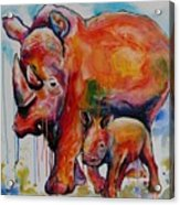 Save The Rhinos Acrylic Print