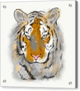 Save The Tiger Acrylic Print