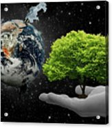Save Tree Acrylic Print