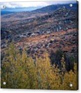 Sawtooth National Forest 1 Acrylic Print