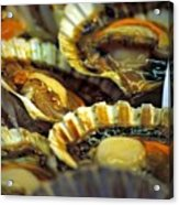 Scallops At Rialto Market In Venice Acrylic Print