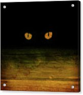 Scare-d-cat Acrylic Print by Shevon Johnson