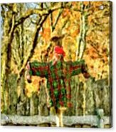 scarecrow in field at Stanhope Waterloo Village Acrylic Print