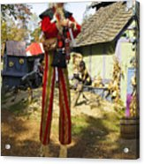 Scarecrow Walking On Stilts Acrylic Print