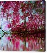 Scarlet Water Acrylic Print