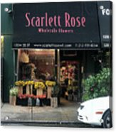 Scarlett  Rose Acrylic Print