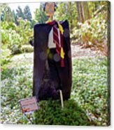 Scarry Potter Scarecrow At Cheekwood Botanical Gardens Acrylic Print
