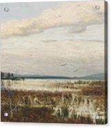 Scene Of Chiemsee, Moor Landscape Acrylic Print