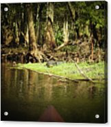 Scenes From A Kayak, No. 15 Acrylic Print
