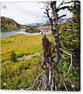 Scenic Alpine Lake And Meadow Acrylic Print