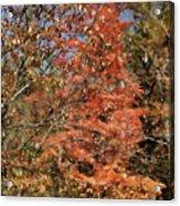 Scenic Autumn  Acrylic Print