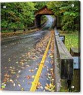 Scenic Drive 1 Acrylic Print