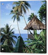 Scenic Thatched Hut Acrylic Print