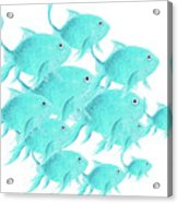 School Of Fish Acrylic Print