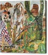 Scorpian Ridge Acrylic Print
