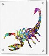 Scorpion-colorful Acrylic Print