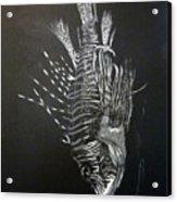 Scorpion Fish Acrylic Print
