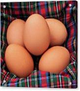 Scotch Eggs Acrylic Print