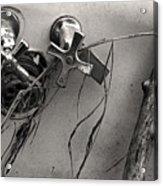 Scotopic Vision 8 - Tub Acrylic Print by Pete Hellmann