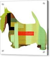 Scottish Terrier Acrylic Print by Naxart Studio