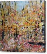 Scotts Run Nature Preserve 201803 Acrylic Print