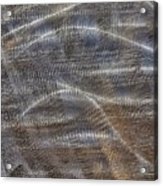 Scratched Metal Acrylic Print