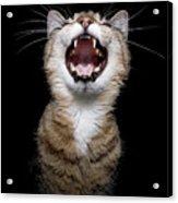 Scream Acrylic Print