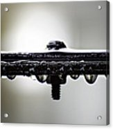 Screw This Rain Acrylic Print