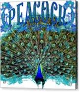 Scroll Swirl Art Deco Nouveau Peacock W Tail Feathers Spread Acrylic Print