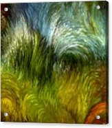 Scrub Vegetation Acrylic Print