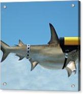 Scuba Shark Acrylic Print