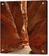 Sculpted By Wind And Water - Petra Acrylic Print by Nabila Khanam