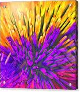 Sea Anemone Abstract - Kooosh Ball Acrylic Print