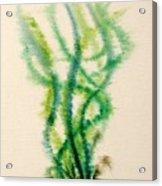 Sea Bed One Acrylic Print