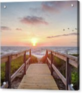 Sea Birds At Sunrise Acrylic Print