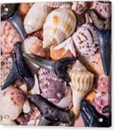 Sea Bones 22 Acrylic Print